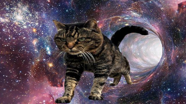 宇宙猫を自作