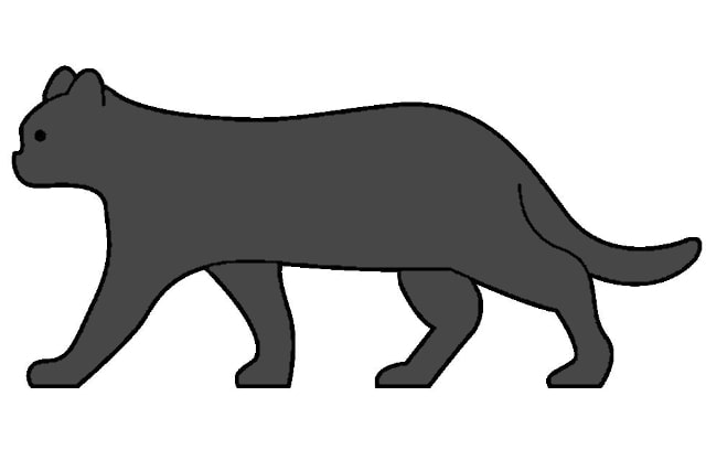 ソリッドブラックの猫の画像